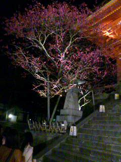 京都27.png