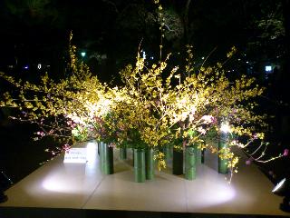 京都47.png