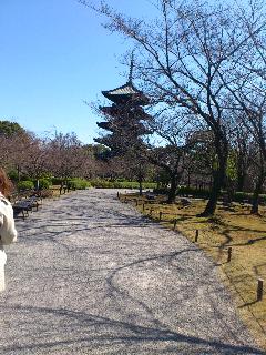 京都49.png