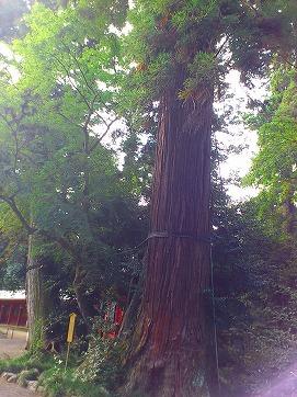 香取神宮2.jpg