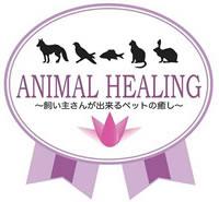 animal02.jpg